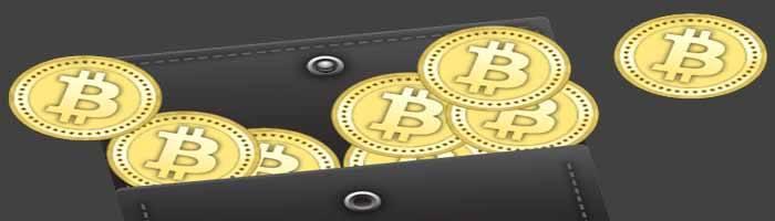 bitcoin wallets economics